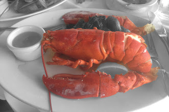 Photo: Lobster...