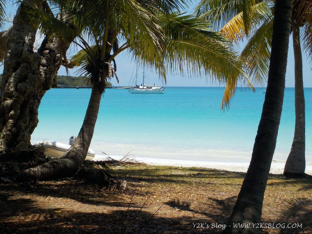 Y2K all'ancora nella Baia di Kuto - Isola dei Pini