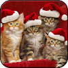 Christmas Wallpapers HD (backgrounds & themes) APK