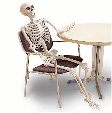Prop, skelett 152 cm