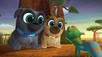 Lemur Play / How the Dog Park was Won
