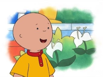 Something For Everyone/Skating Lessons/Caillou Becomes A Waiter/Sticking To It!/New Clothes