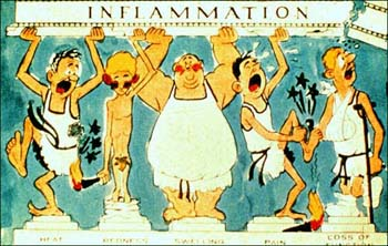 inflammation hates weed