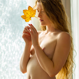 Fall Colors by Shawn Crowley - Nudes & Boudoir Artistic Nude ( woman, nude, window, seattle, female, red head, soft )