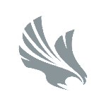 Hawk Safety Icon