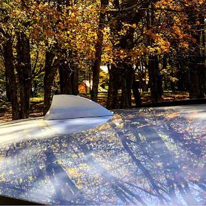 3シリーズ ツーリングのカスタム事例画像 ぴろたん3さんの2020年10月11日22:30の投稿