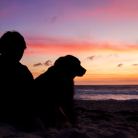 Peaceful sunset by Clarissa Human - Uncategorized All Uncategorized ( beaches, people and dogs, sunset, beach, dogs, dog, peaceful,  )