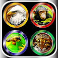 100'+ Animal Sounds & Buttons icon
