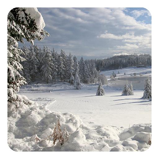 Raindrops Live Wallpaper: Download Winter Live Wallpaper For PC