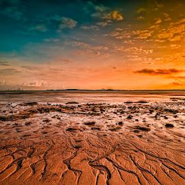 Martian Landscape by Gordon Koh - Landscapes Beaches