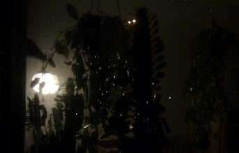 Photo: 33 Wednesday 02.01 - At home