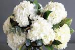 Colombian Hydrangea Bouquet
