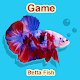 Download Betta Fish Seller For PC Windows and Mac