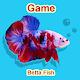 Betta Fish Seller APK