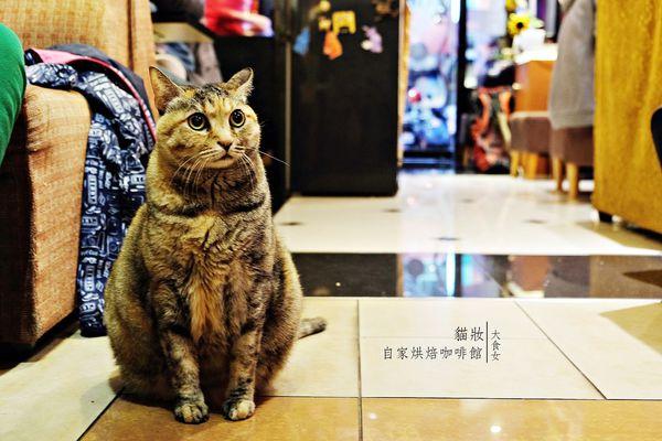 貓妝自家烘焙咖啡館