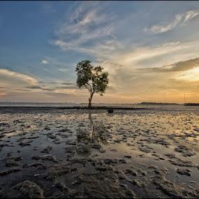 ALONE by Ryan Rey Genciana - Landscapes Sunsets & Sunrises ( landscapes )