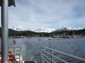 Photo: going whale watching in Juneau