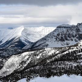 by Steven Liffmann - Landscapes Mountains & Hills