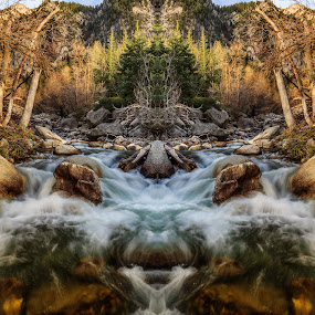 Cottonwood Creek by Brandon Montrone - Digital Art Places ( mirror, water, abstract, mountain, art, fine art, canyon, long exposure, forest, symmetry, river )