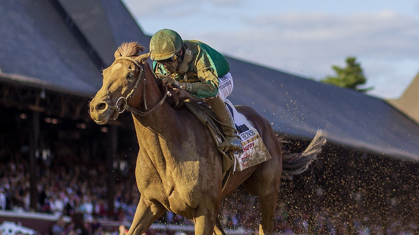 Watch All In: Road to the Breeders' Cup live