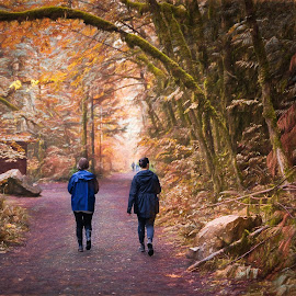 Magical Landscape by Garry Dosa - Landscapes Forests ( orange, forest, outdoors, walking, autumn, brown, people,  )