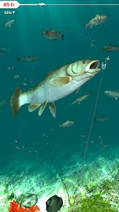 Rapala Fishing – Daily Catch 8