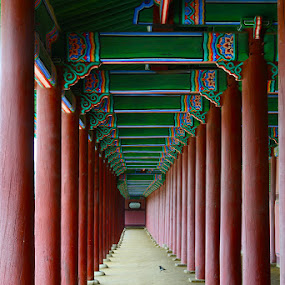 The Palace. Soul by Lindra Hismanto - Buildings & Architecture Public & Historical ( lindra, seoul, hismanto, palace, korea, pillars, red, green )