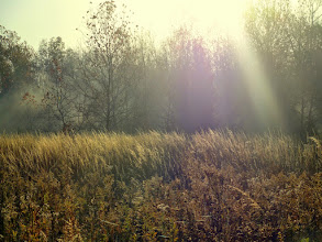 Photo: Golden morning sunrise on a plain in the autumn mist at Eastwood Park in Dayton, Ohio.