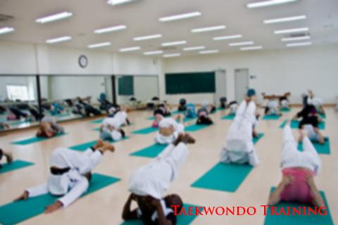 Taekwondo Training Program