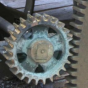 Gearing Up by Susan Englert - Artistic Objects Industrial Objects ( mill, grist, old, wheel, gear, rusty, grip, teeth, iron,  )