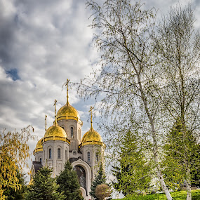 Church  by Dmitriy Yanushevichus - Buildings & Architecture Public & Historical ( hill, park, church, trees, forest, antique )