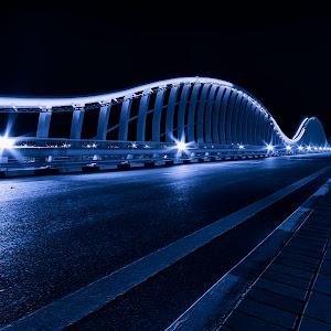 Meydan_Bridge_20121101_0005bw.jpg