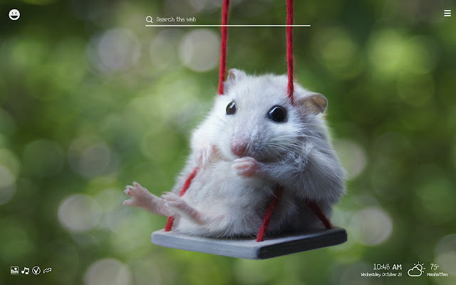 Awesome Funny Animals Hilarious Animal Wallpapers Download Free Architecture Designs Momecebritishbridgeorg