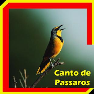 Canto de Passaros - náhled