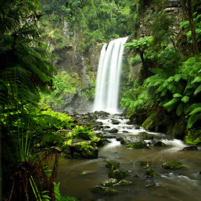 Hopetoun Falls, Great Otway National Park by Jason Asher - Landscapes Forests ( water, stream, waterfall, moss, forest, ferns, rainforest, hopetoun, fern, marriners falls, national park, jason asher, australia, falls, dark, otway, moody, otway national park, victoria, hopetoun falls, great otway, vic, rain )