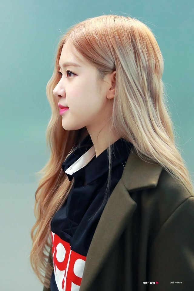 rose profile 3