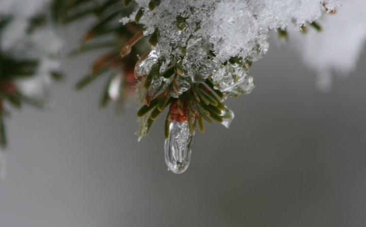 Goccia di ghiaccio di bildo