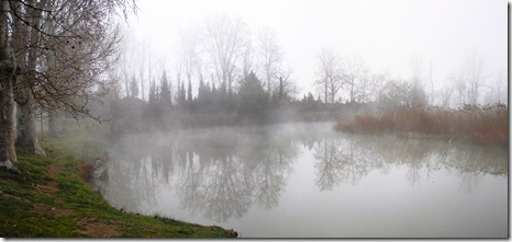 Nieblas del Tajo
