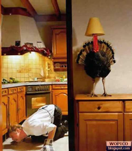 Where is the Turkey