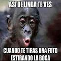 Imagenes locas icon