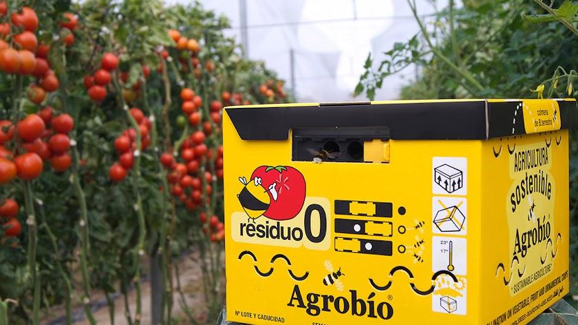 Agrobío, una compañía comprometida con la seguridad y la innovación
