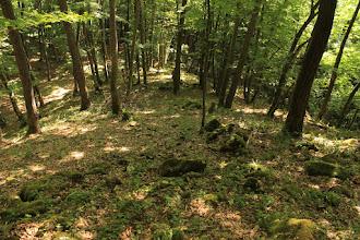 Photo: A Telekes-völgy 6. sz. mellékvölgye feletti kis gerinc a terület triász képződményeit tárja fel