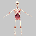 Birikis Skeleton icon