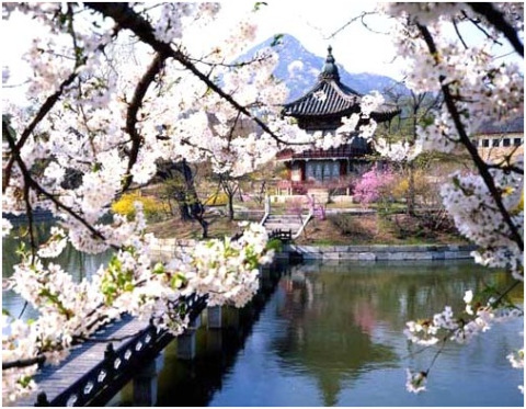 Hasil carian imej untuk pemandangan indah di korea