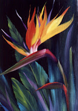 Photo: KP010 Bird of Paradise (for 18 x 24 canvas) $6.99