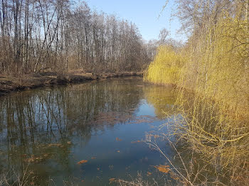terrain à Rachecourt-sur-Marne (52)