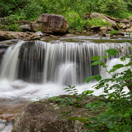 Roaring Creek Falls by Kevin Frick - Landscapes Waterscapes ( stream, waterfall, west virginia )