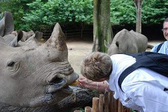 Photo: Benay feeds her friend, the white Rhino
