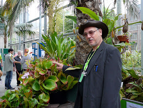 Photo: ICPS Conference in Leiden (NL) 2010.Siggi Hartmeyer pointing at the large Heliamphora of the Hortus Botanicus Leiden. In the back: Allen Lowrie.