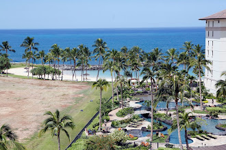 Photo: View of lagoon 2 from balcony and lanai - http://www.vrbo.com/203370